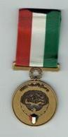 Médaille Guerre Du Golfe Koweit - Sonstige Länder