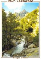 34 - Gorges D'Héric - Vue Sur Les Gorges - Non Classificati