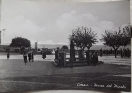 356) CETRARO COSENZA    CARTOLINA VIAGGIATA - Cosenza