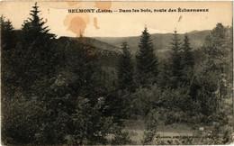 CPA BELMONT - Dans Les Bois Voute Des Écharmeaux (430289) - Belmont De La Loire