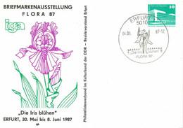 5010 Erfurt - Iris Blühen - Flora 1987 - IGA - Postkarten - Gebraucht