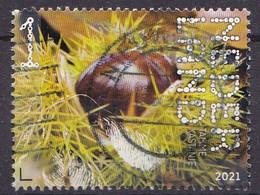 Nederland - Beleef De Natuur - 16 Augustus 2021 - Landgoed Haarzuilens - Tamme Kastanje - Castanea Sativa - Gebruikt - Used Stamps