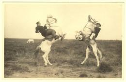 A0100[Postkaarten] En Camargue / Provence (gardians, Etc.). - Lot Van 11 Postkaarten, Klein Formaat, Diverse Periodes - 5 - 99 Cartes