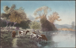 Cattle At The Riverside, 1911 - Philco Postcard - Cows