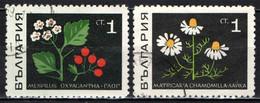 BULGARIA - 1969 - ERBE: MESPILUS OXYACANTHA E CAMOMILLA - USATI - Gebraucht