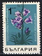 BULGARIA - 1968 - FIORE: CAMPANULA - FLOWER - USATO - Gebraucht