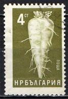BULGARIA - 1965 - PRODOTTI AGRICOLI: BARBABIETOLA - USATO - Gebraucht