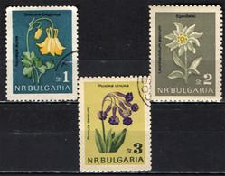 BULGARIA - 1963 - FIORI: COLOMBINA - STELLA ALPINA E PRIMULA - FLOWERS - USATI - Gebraucht