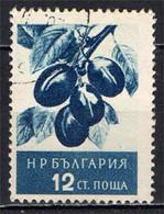 BULGARIA - 1956 - FRUTTA: SUSINE - FRUIT - USATO - Gebraucht