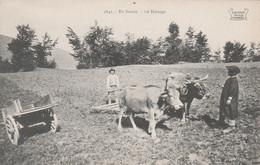 CPA (73) EN SAVOIE N° 1641 Le Hersage Attelage Boeuf Petit Paysan Agriculture Métier   2 Scans - Non Classificati