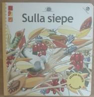 Sulla Siepe - AA.VV. - La Coccinella,2001 - A - Bambini E Ragazzi