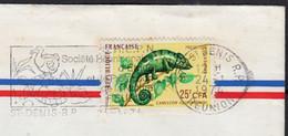 974 ST DENIS R.P  Le 24 1 1974 La  Réunion Caméléon 25f CFA  Y.T. 399  SEUL Sur Enveloppe Pour 78400 CHATOU - Lettres & Documents
