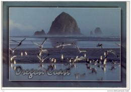 OREGON COAST -  Panorama, Heystacks, Seagulls - American Roadside