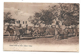 CONVOI D ANES AU  MOSSI ( HAUTE VOLTA ) - Burkina Faso