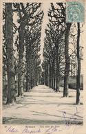 92 - HAUTS DE SEINE - SCEAUX - Une Allée Du Parc - CPA - Sceaux
