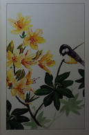 Petit Calendrier De Poche 2001 Oiseau Aquarelle De Rublon Pharmacie Le Blanc Indre - Formato Piccolo : 2001-...