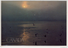 CANADA - NOVA SCOTIA, Cape Sable Island, Large Format,   Air Mail , Nice Stamp - Other