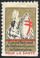 FRANCE  1931 -  VIGNETTE  Contre La Tuberculose - Pour La Santé - Tegen Tuberculose