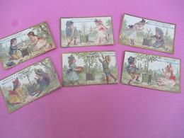 6 Chromos /Plantation Arbre Avec Enfants/Chicorée à L'Ecoliére/ Alphonse LEROUX, ORCHIES (Nord)/Vers 1885-95    IMA580 - Thé & Café