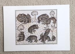 CPM LES OURS Livre De Chasse Comte Febus De Foys Seigneur De Béarn - Dessin - Bears