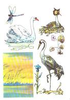 A.M.Sementsov-Ogievski:Žuvintas Nature Reserve, Birds, Stork, Swan, Dragonfly, 1976 - Birds