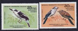 MADAGASCAR (Malagasy) - Faune, Oiseaux - Y&T N° 663-665 - 1982 - MNH - Madagascar (1960-...)