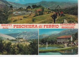 A820 APPENNINO REGGIANO SALUTI DALLA PESCHIERA DI FEBBIO - Reggio Emilia