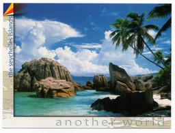 Seychelles La Digue Anse Patates - Turtles