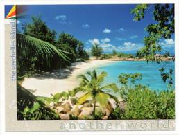 Seychelles Praslin Petite Anse Kerlan - Turtles