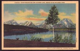 AK 002695 USA - Wyoming - Grand Teton National Park - Teton Mountains And Jackson Lake - Other