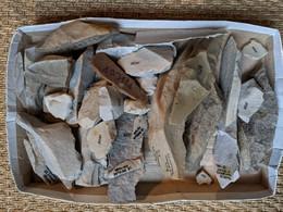 Silex Taillés De La Forêt De Montmorency - Archaeology