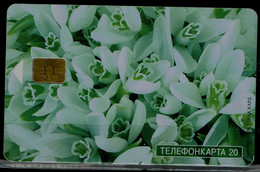 RUSSIA  2004 PHONECARDS FLOWERS USED VF!! - Fiori