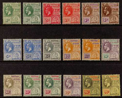1913-21 KGV Defins Set, Wmk Mult Crown CA Complete Set Plus Shades Of 1c, 2c, 4c, 5c, 12c & 60c, 96c On White Back And O - British Guiana (...-1966)
