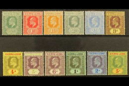 1907-12 Wmk Crown CA Set Complete To 5s, SG 99/110, Very Fine Mint (12 Stamps) For More Images, Please Visit Http://www. - Sierra Leone (...-1960)