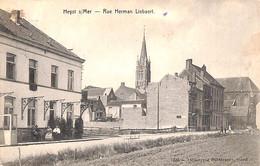 Heist - Heyst - Rue Herman Libaert (animée De Graeve 1908) - Heist