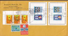 JACQUES T. SCHIFF Jr. NEW YORK 198? Cover Brief Cutout Fight Against Malaria W. Margins Blocks Miniature Sheets - Briefe U. Dokumente