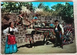 Sicile Costume Folklorique Mulet Panaché Et Charette Décorée - Altre Città