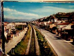 ALCAMO MARINA TRAPANI VB1979 IG10498 - Trapani