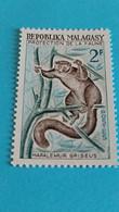 MADAGASCAR - Repoblika Malagasy -  Timbre 1970 : Protection De La Faune - Hapalémur Griseus - Madagascar (1960-...)