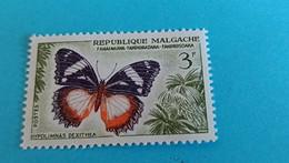MADAGASCAR - Repoblika Malagasy -  Timbre 1960 : Papillon Hypolimnas Dexithea - Madagascar (1960-...)