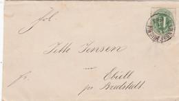 AD Schleswig Holstein Brief 1865 - Schleswig-Holstein