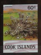 1980, Cook Inseln, 749 U, ** - Cookeilanden