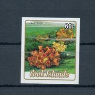 1984, Cook Inseln, 996 U, ** - Cookeilanden
