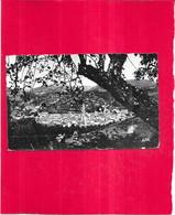 SAINT AFRIQUE - 12 - Vue Générale - Edit APA-POUX  - TON2 - - Saint Affrique
