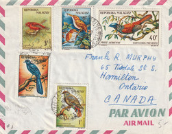 MADAGASCAR Lettre 1963 Bel Affranchissement Avec Timbres Oiseaux - Madagascar (1960-...)