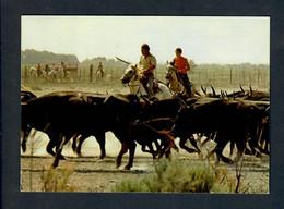 CGF-CPSM - La Camargue - Gardians  Et Leur Manade De Taureaux  (voyagée 12/05/1956) - TBE - Bull
