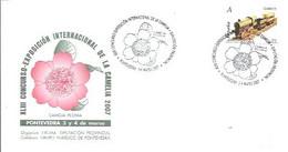 MATASELLOS 2007 PONTEVEDRA CAMELIA - 2001-10 Storia Postale