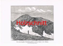 012-3 Beobachtungsstation Säntis Bergsteiger Großbild Druck 1891!! - Stampe