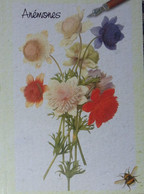 Petit Calendrier Poche  2006 Fleurs Anémones - Pharmacie Avermes Allier - Illustration Nicolas Robert - Formato Piccolo : 2001-...