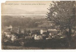 CPA, D.42 , Belmont , Vue Générale , Prise De Montaigu ,Ed. 1920 - Belmont De La Loire